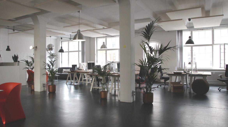 diseño oficina 2020